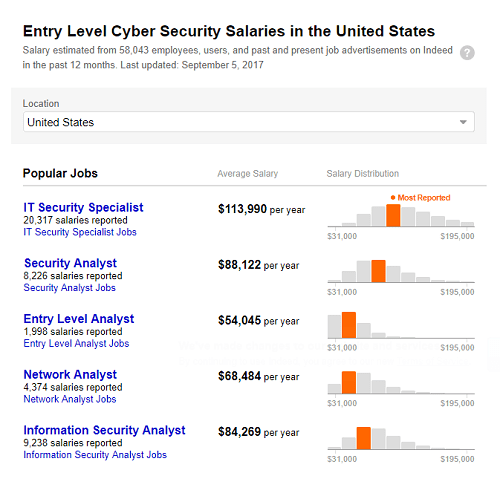 Cyber Security Salary Guide: What Does Today's Cyber